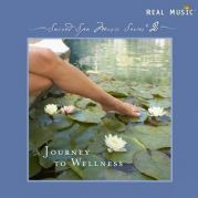 Journey to Wellness - Various Artists